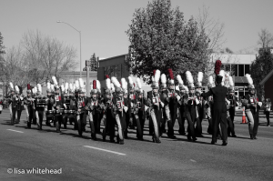 veterans-parade-2016-bw